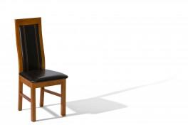 Jídelní židle A-27